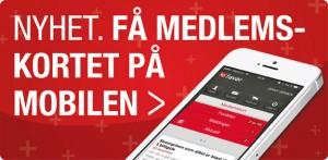 LOfavør app 2014